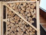 Firewood Beech |  Firewood, briquettes | 19th-Wood s.r.o.
